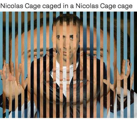 Meme Nicolas Cage - nicolas cage caged in a nicolas cage cage ie ll tc meme