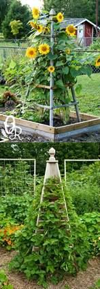 Vertical Garden Structure 21 Easy Diy Trellis Vertical Garden Structures Page 3