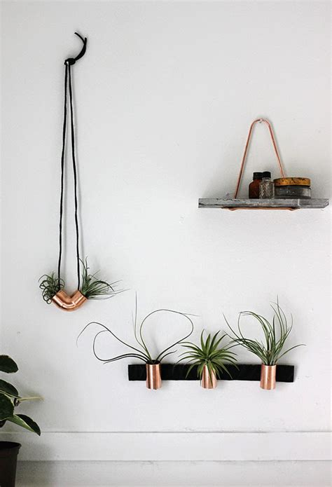 wall plant holders 24 ways to hang plants on the wall andrea s notebook