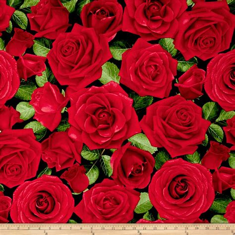 Buy Roses by Timeless Treasures Large Allover Roses