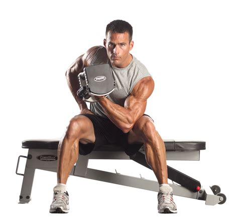workout bench sports authority workout bench sports authority 100 powerblock sport bench