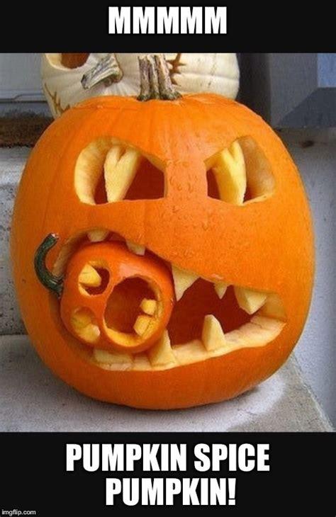 Pumpkin Meme - pumpkin spice imgflip