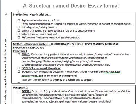 streetcar named desire themes vickila profile tes
