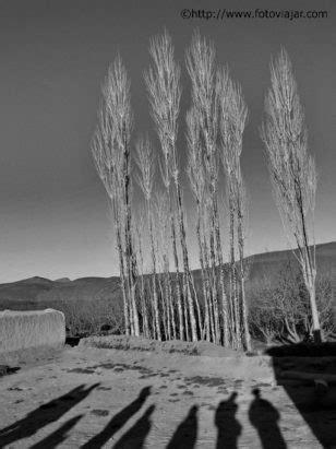 Máquina digital fotográfica - Onde comprar? Net, Andorra