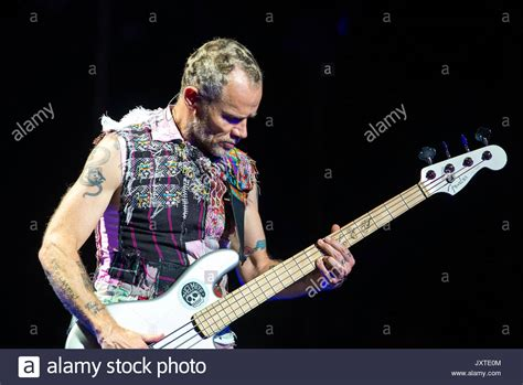 Chili Peppers Band Musik chili peppers band stock photos chili