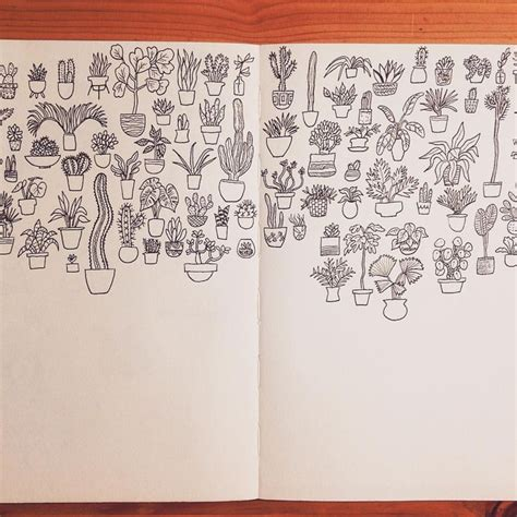 how to draw on doodle club 172 best cacti drawing ideas images on