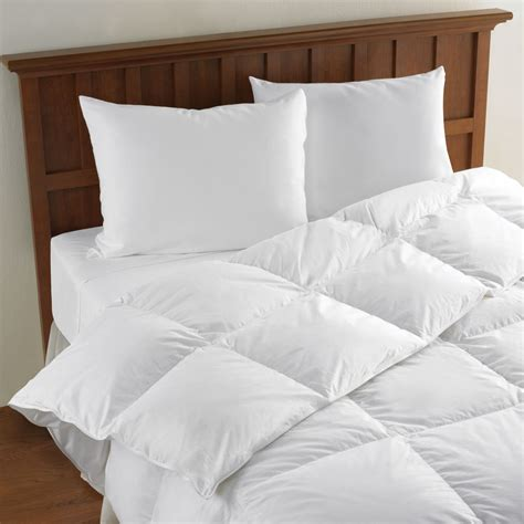 lightweight comforters the lightweight european goose down comforter hammacher