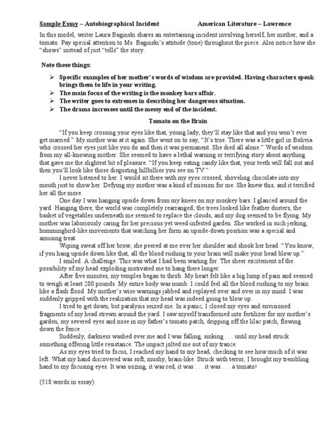 biographical essay examples 9 my autobiography essay examples essay