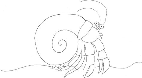 hermit crab template coloring pages crab realistic sea animals page free