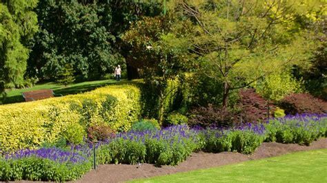 melbourne royal botanic gardens royal botanic gardens in melbourne expedia