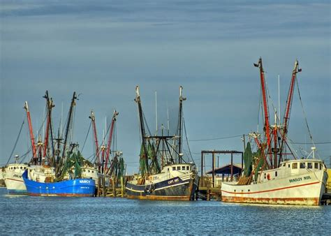 shrimp boat orange beach shrimp boats gulf coast autos post