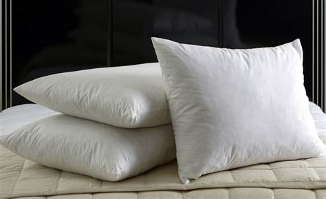 Feather And Pillow by Pillow Insert Duck 95 5 Feather 20x26 Fds 26s