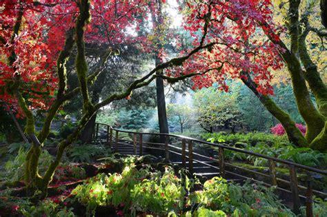 Kamor Garden Shed by Butchart Gardens Tours From Fasci Garden