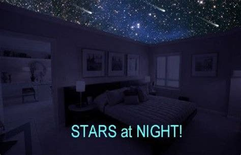 Starscape Ceiling by Starscape Ceiling Murals Home