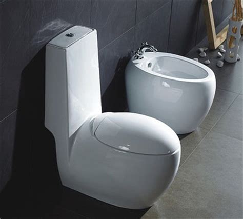 What S A Baday Toilet Luxury Modern Home