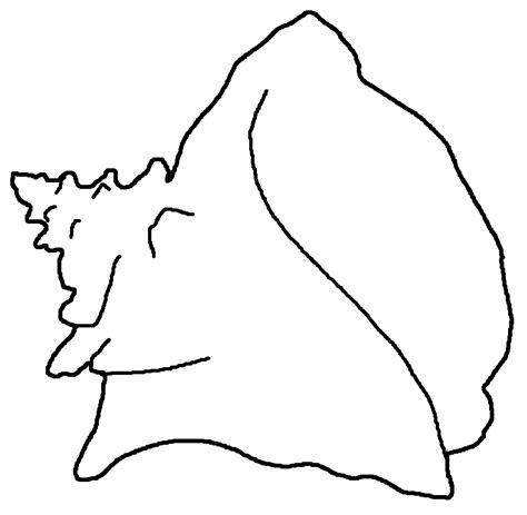 shell outline free download clip art free clip art on