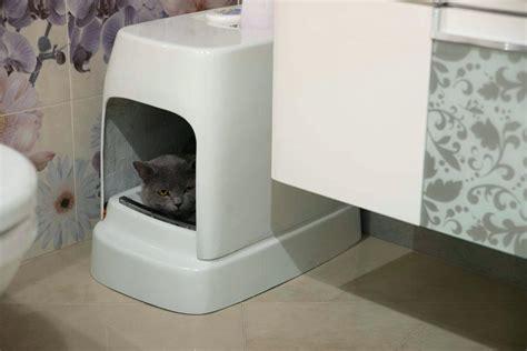 Cat Litter System Australia - automatic litter box best automatic cat litter box