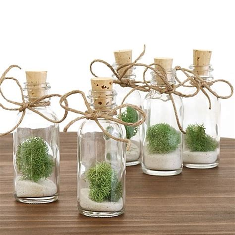 Plant Favors by Moss Bottle Favor