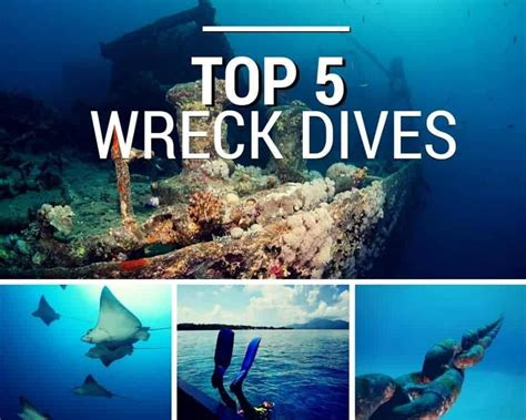 best wreck dives in the world top 5 best wrecks dives in the world dive in