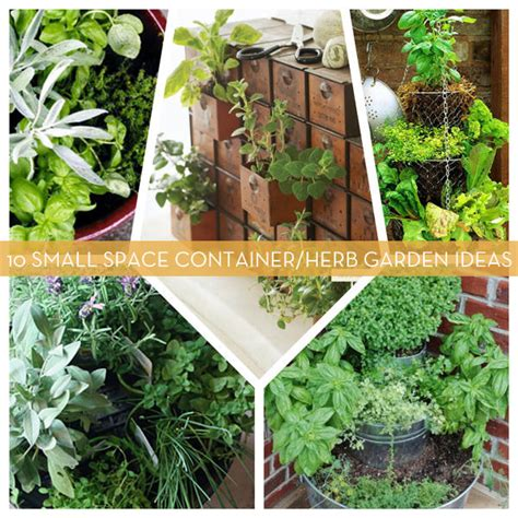 Ideas For Herb Gardens 10 Small Space Container And Herb Garden Ideas Gift Ideas Creative Spotting
