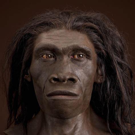 homo erectus are sub saharan africans admixed with homo erectus dna