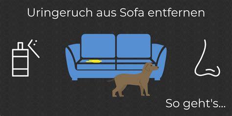 Geruch Aus Polster Entfernen by Hundegeruch Entfernen Awesome Hundegeruch Entfernen With