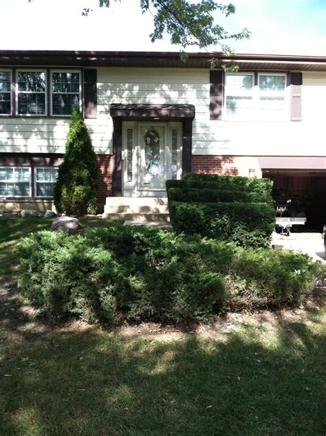 Bushes For Front Of House by Trimmed Shrubs In Front Of House Yelp