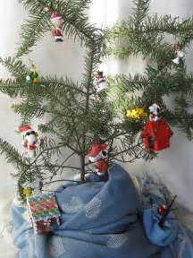 top contenders charlie brown christmas tree photo contest
