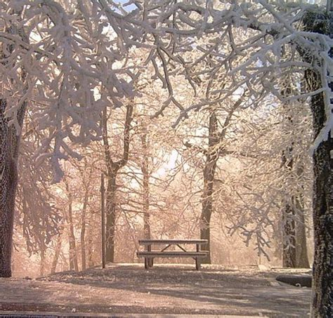 Wilhelmina State Park Cabins by Wilhelmina State Park Mena Ar Hours Address Top Hiking Trail Reviews Tripadvisor