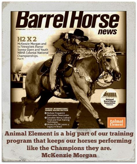 Animal Elements Foundation Detox by 15 Best Equine Performance Supplements Images On
