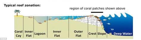 coral bleaching diagram satellites capture coral bleaching in great barrier reef