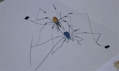 House Spider Seattle by Marlin Peterson Artist Creates 3d Paintings Of
