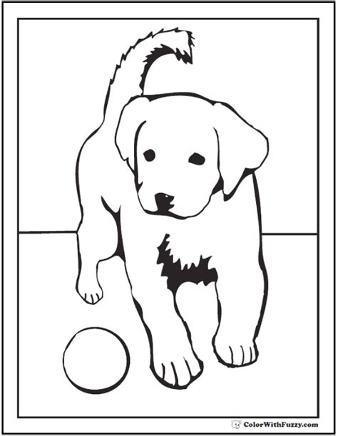 Golden Retriever Puppy Coloring Pages