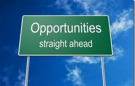 types of business opportunities wise business plans