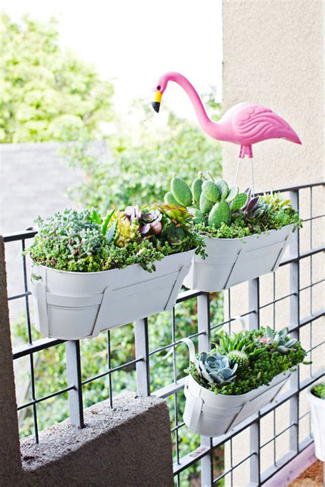 Balcony Garden Planters by Apartment Balcony Succulent And Cacti Garden Melodrama