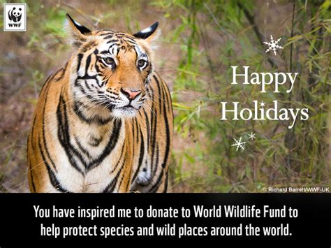 new year animal tiger celebrate the holidays with a gift to nature world