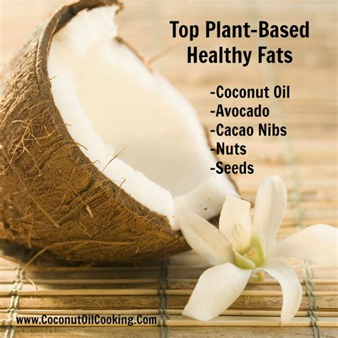 healthy fats plant based top plant based healthy fats