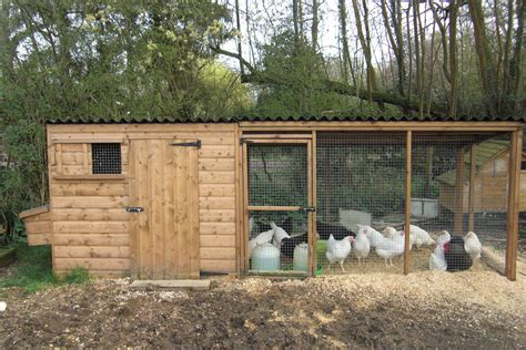 the chicken house tall poultry house with nestboxes and large adjoining run