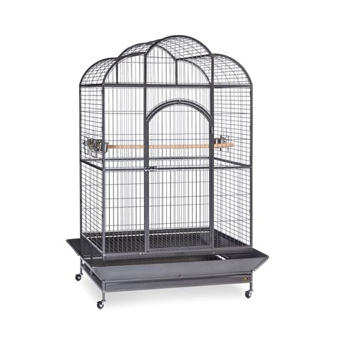 cage for sale prevue bird cages for sale bird cages