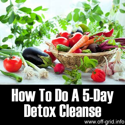Does Xpulsion 5 Day Detox Work by How To Do A Detox Liss Cardio Workout
