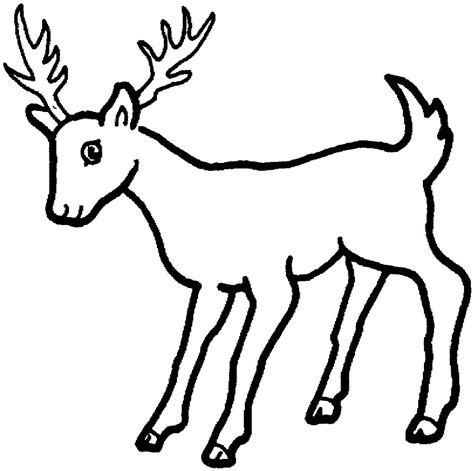coloring page deer for education new animal deer coloring pages