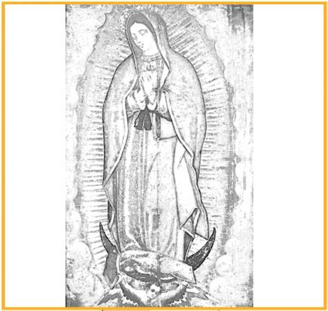 imagenes para dibujar virgen de guadalupe search results for imagenes de la virgen de guadalupe