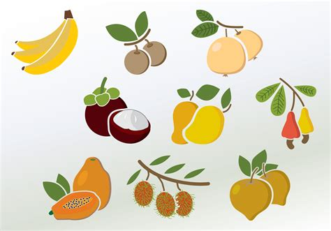 colorful fruit set of colorful fruit vectors free vector