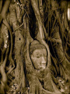 Satu Buddha wow amazing ini dia kemegahan 16 situs patung buddha terkenal di dunia sang kabar
