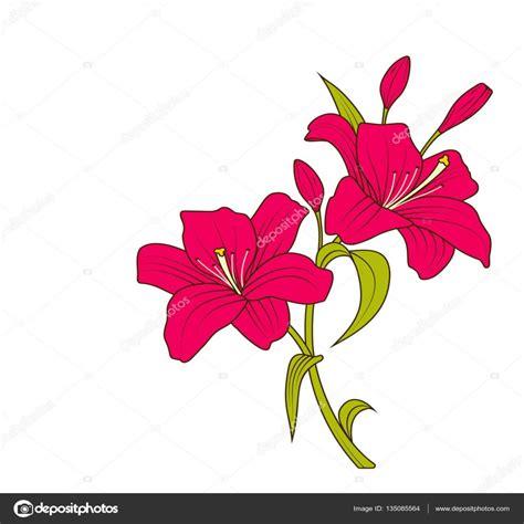 Imagenes De Flores Dibujos | lujo imagenes de dibujos de flores a color