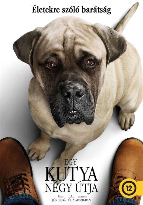 film egy kutya negy utja corvinmozihu