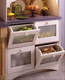 storage ideas for kitchen photo album best home design cabinet decoration