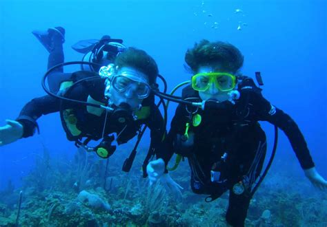 dive belize belize diving vacations scuba trips diving packages