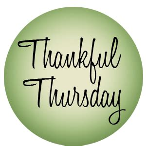 Thursday Three Books Where The Leading Has Something To Hide by Thankful Thursday A Recipe Blue Biscotti