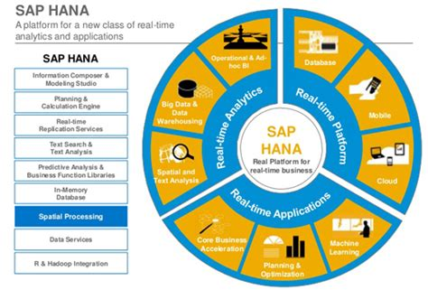 Supplier Real Indian Set By Hana numeric sap hana
